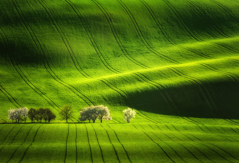 Czechia Photo Tour, Moravian Tuscany