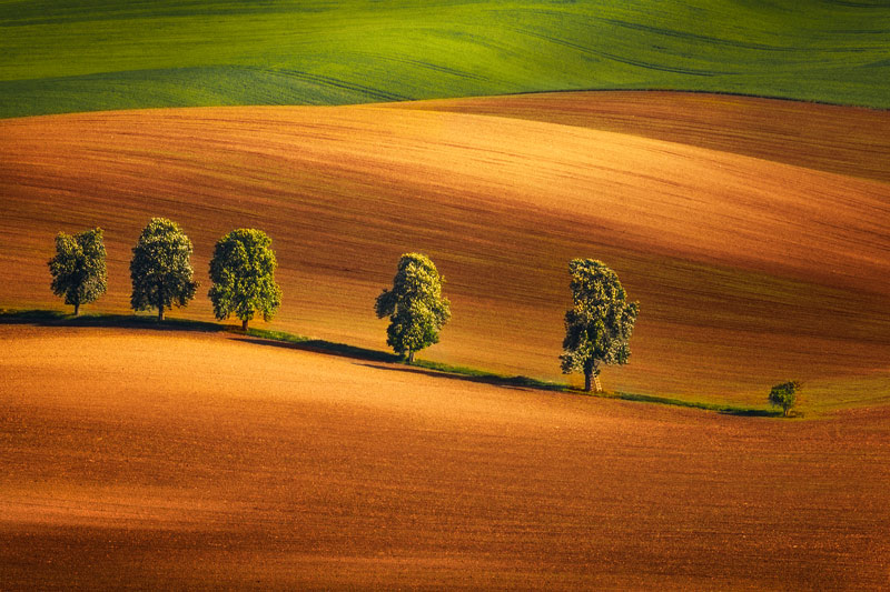 Czechia Photo Tour, Moravian Tuscany alley