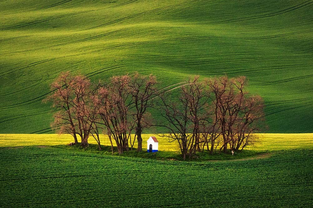 Moravian Tuscany Photo Tour - Inscape Photo Tours a chapel in rolling hills with sentinel trees